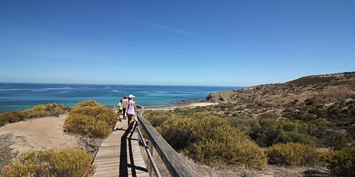 Hallett Cove Conservation Park beach clean-up and geological tour