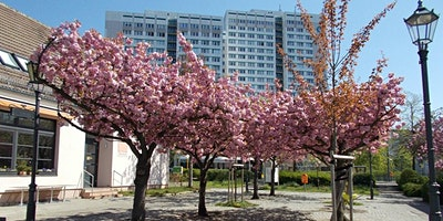 Guided Tour - Do you know Berlin?  Marzahn is part
