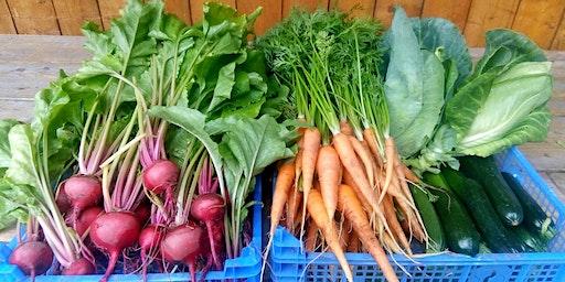 Grow your own urban vegetable garden