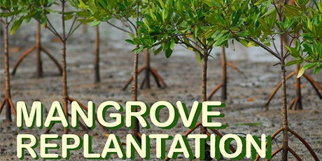 2020 MANGROVE REPLANTATION tickets