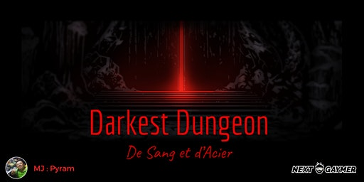 Brigandyne - Darkest Dungeon - par Pyram