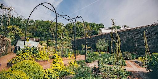 Planting Design for Beginners Course / Cwrs Dylunwaith Plannu i Ddechreuwyr