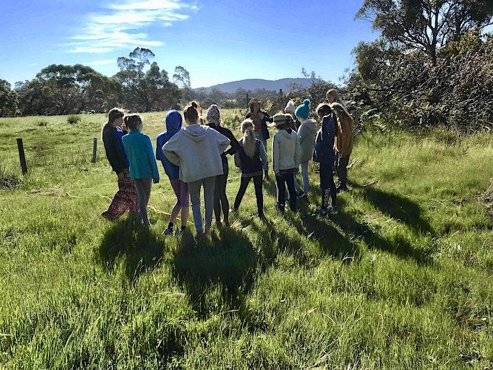 VIC - Yarra Valley Girls Bush Camp - 10-12 y.o girls November 2021 image