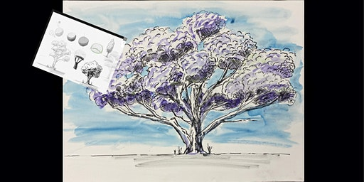 Draw, Ink and Paint a Jacaranda Tree, Paint and Sip Brisbane 20.2.20