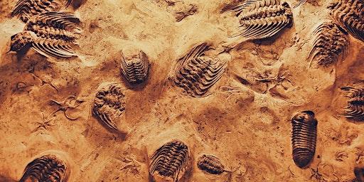 Elan Valley Geology Talk