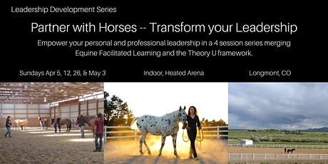 4 Session Series: Partner With Horses - Transform Your Leadership tickets