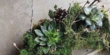 Living wreath making with succulents tickets