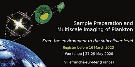 Sample Preparation and Multiscale Imaging of Plankton billets