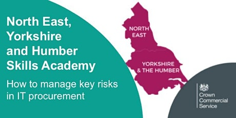 How to manage key risks in IT procurement (Newcastle) tickets