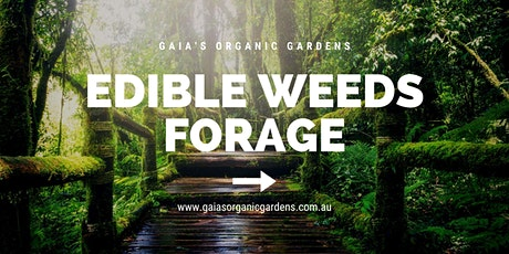 Edible Weeds Forage tickets