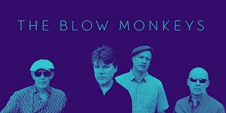 The Blow Monkeys tickets