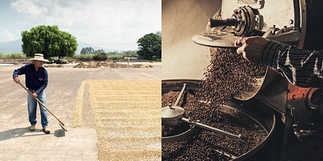 Discover Guatemalan Coffee @ Warsaw Coffee Festival, March 21-22 tickets