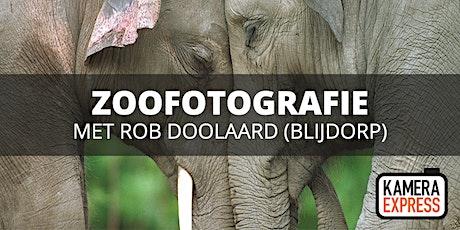 Zoofotografie Diergaarde Blijdorp met Rob Doolaard tickets
