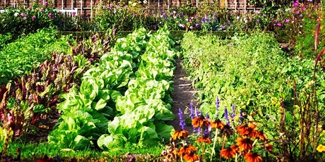 Barter Based Session: Introdution to Natural Gardening tickets