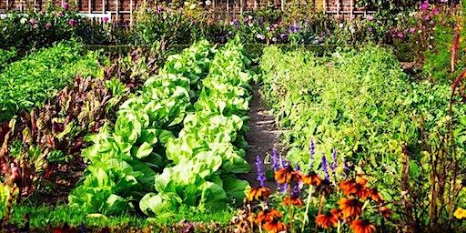 Barter Based Session: Introdution to Natural Gardening