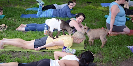 FIRST GOAT YOGA OF THE YEAR! - Saturday 5/2 | 8:30am - 9:30am | tickets