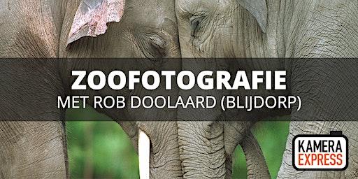 Zoofotografie Diergaarde Blijdorp met Rob Doolaard
