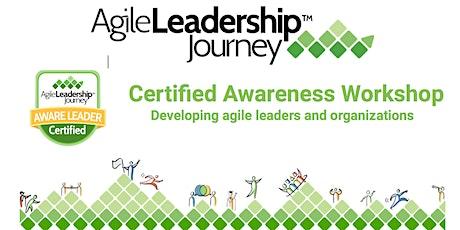 Agile Leadership Journey Awareness Workshop - New York City tickets