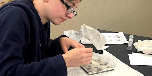 CSI Science: 4th-6th Grades