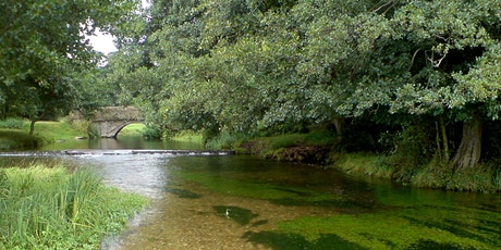 River Condition Assessment  Online Training tickets
