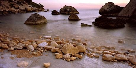 Découverte de la biodiversité du littoral des Calanques billets