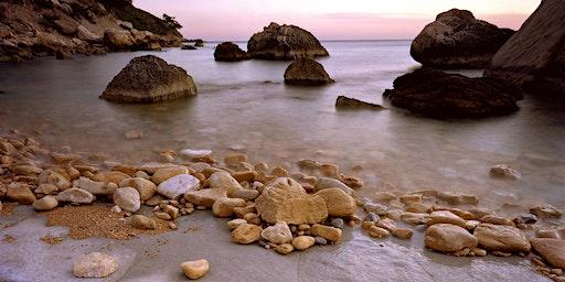 Découverte de la biodiversité du littoral des Calanques