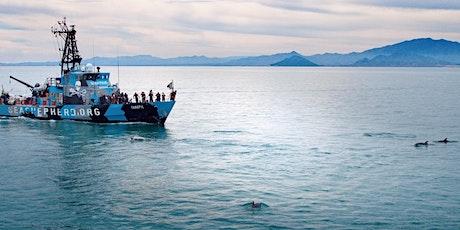 Environmental Film Festival: SEA OF SHADOWS (ENCORE) tickets