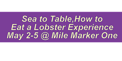 How to Eat  A Lobster Experience