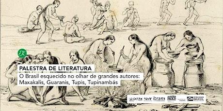 O Brasil esquecido no olhar de grandes autores: Maxakalis, Guaranis, Tupis, Tupinambás ingressos