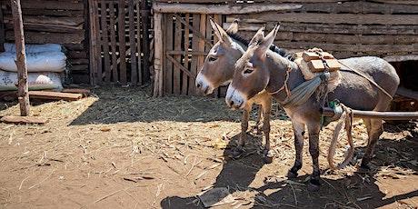 Horse and Donkey Welfare Awareness Evening tickets