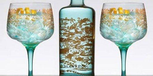 Silent Pool Gin Tour, Tasting & Transport
