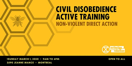 Non Violent Civil Disobedience Training
