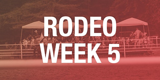 Rodeo Box Seats - Week 5 2020