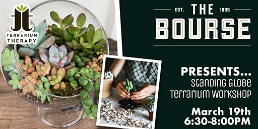 Succulent Globe Workshop at The Bourse