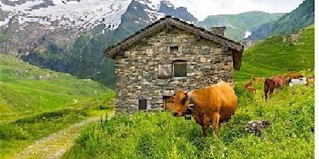 Hut To Hut Trekking in the Alps tickets