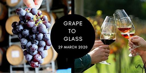 Grape to Glass: Vintage 2020
