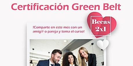 Certificación Six Sigma Yellow Belt + Green Belt entradas