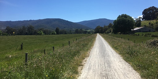 Woori Yallock to Launching Place return hike on the 23rd March, 2020
