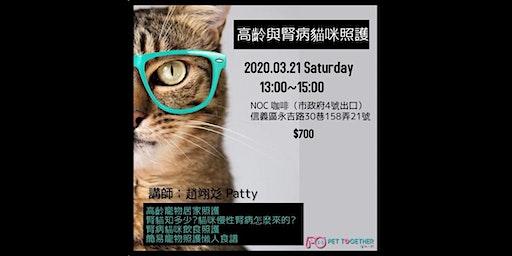高齡與腎病貓咪照護