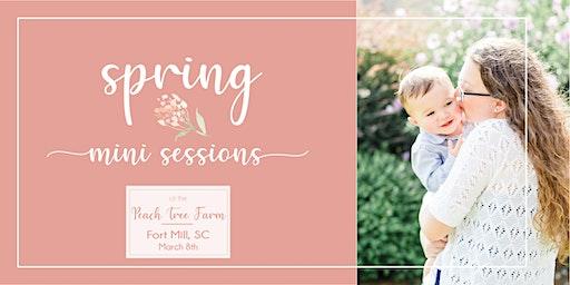 Peach Blossom Mini Sessions