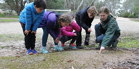Parks Week: Junior Ranger Bush Detectives - Sale Common Wetlands tickets