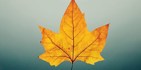 Autumn Leaf Craft workshop tickets