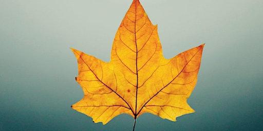 Autumn Leaf Craft workshop