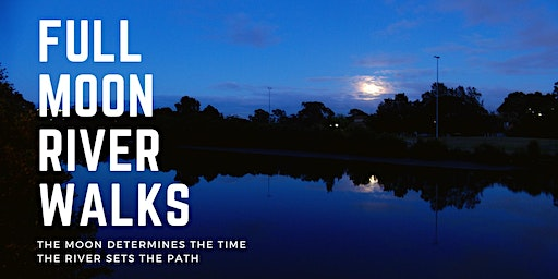 Full Moon Walk : Cooks River Tempe Reserve