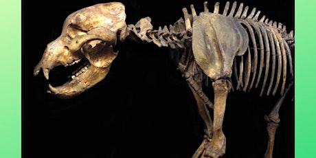 Animali di ieri e di oggi tra scienza e mito biglietti