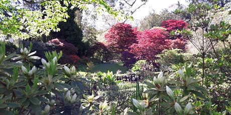 Garden Visit to Mount Usher Gardens and Knockrose House tickets