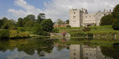 Guided Walk: Summer on the Sizergh Estate
