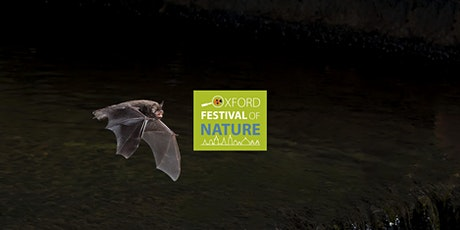 Bat Walk - Farmoor Nature Reserve Thames Water* tickets