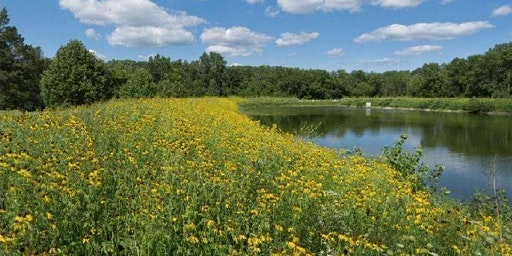 County Grounds Park / Sanctuary Woods - Hydrology Tour