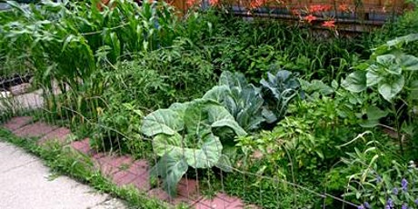 Barter Based Session: And Again! Introdution to Natural Gardening tickets